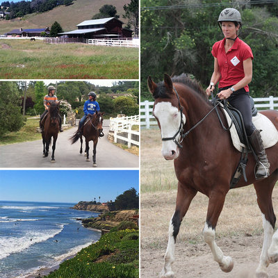 Jec A. Ballou, Giddy'up, Bon Voyage equine travel, travelling overseas with horse, equine travel, horse riding overseas, Jec Ballou horse trainer, jec aristotle ballou, western dressage, jec ballou, dressage exercises for horse and rider, jec ballou equine fitness beyond horse massage