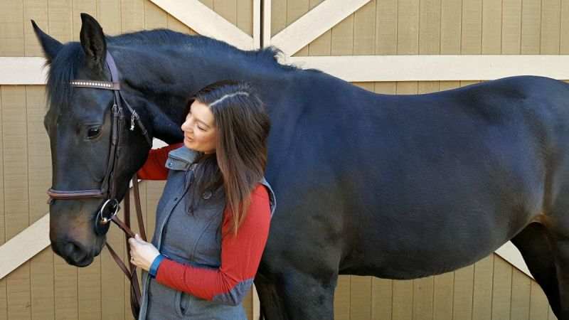 review Equiwinner™ body patches equine fluids horse electrolytes equine