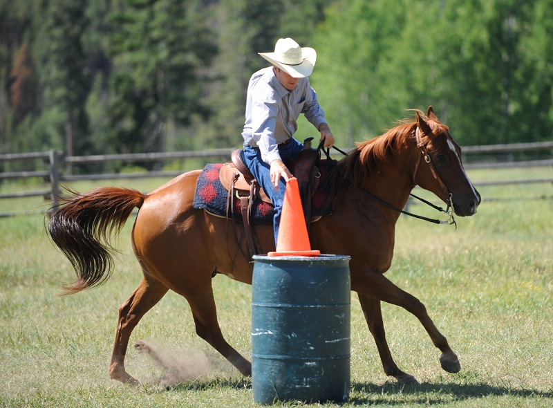 Jonathan Field, Jonathan Field Purpose Camp, Build Confidence in Your Horse, Cone on a Barrel horse exercise, horse jump over log, improve technical horse skills, horse obstacles, increase confidence in horse