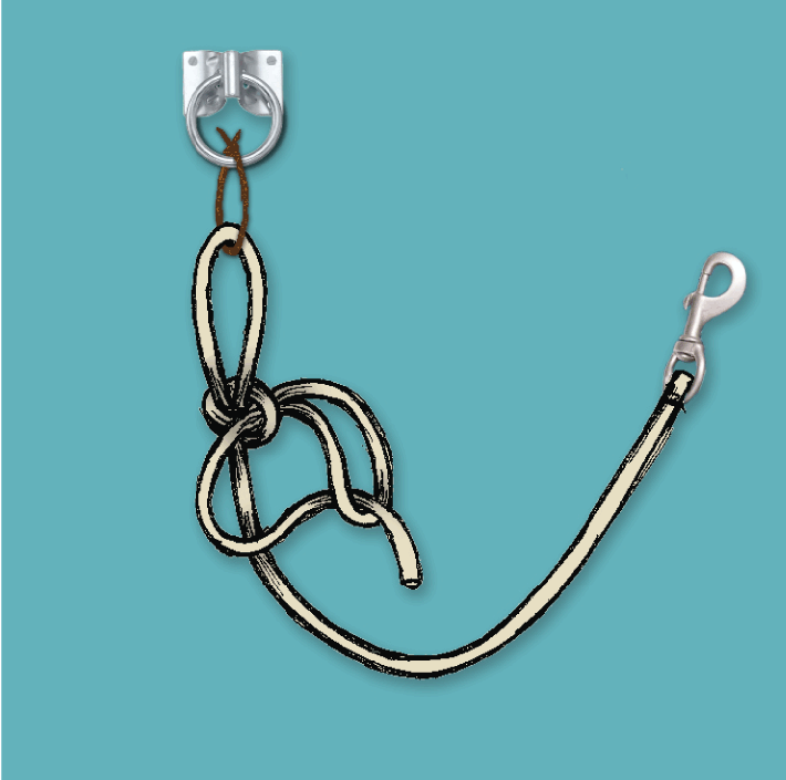 how to tie quick release knot, quick release knot, horse rope knot, equine knot