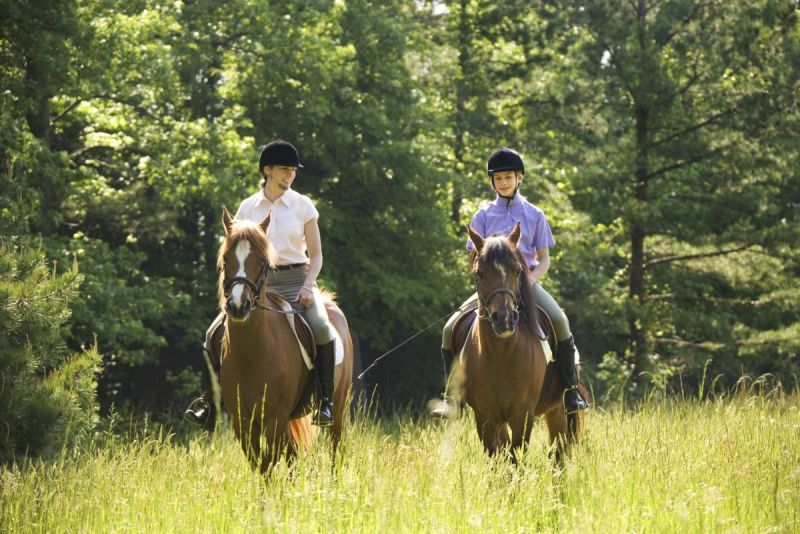 Trail Riding tips, Pat Barriage, Trail etiquette rules, Horse Industry Association Alberta, horse trail riding etiquette