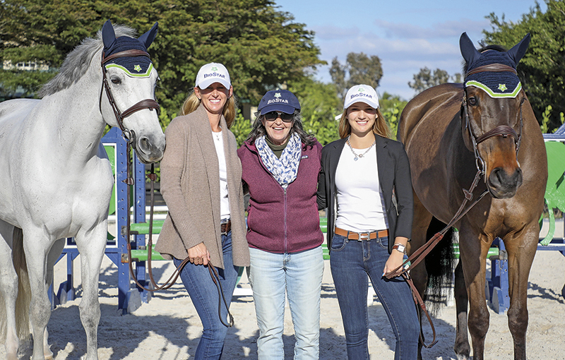 how to market horse business, marketing equestrian products, public relations for the horse industry
