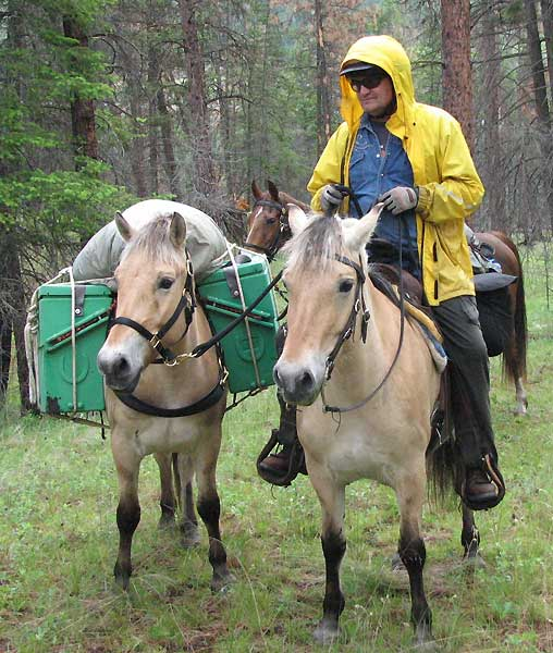 Norwegian Fjord, Asiatic wild horse or Przewalski horse, Highland Pony and the Icelandic Horse. Horses used by vikings, Beaver Dam Farm in Nova Scotia, American Driving Society (ADS), Wallace Point Fjords, Blue Raven Farm, and McKinnon's Neck Farm