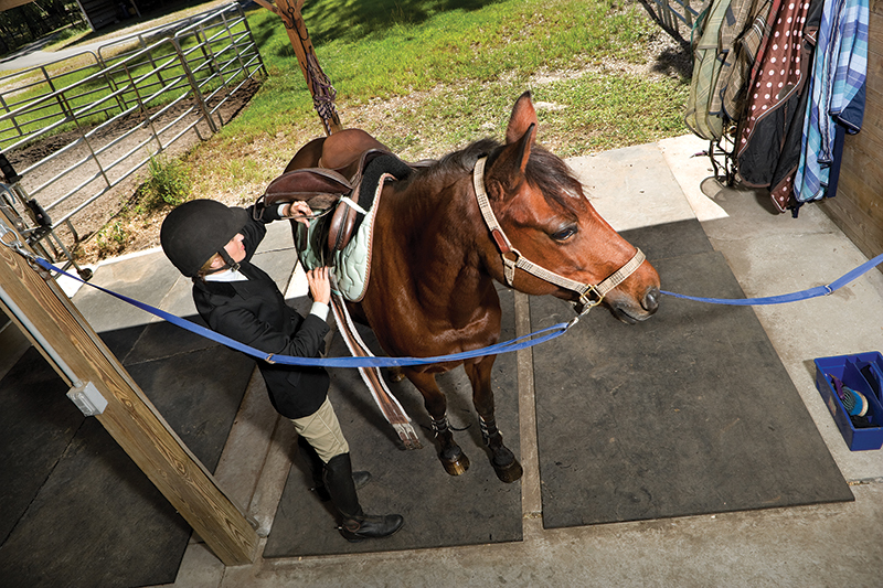 types of riding gear, types of saddles, behavioural issues horse, alexa linton, horse doesn't like tack