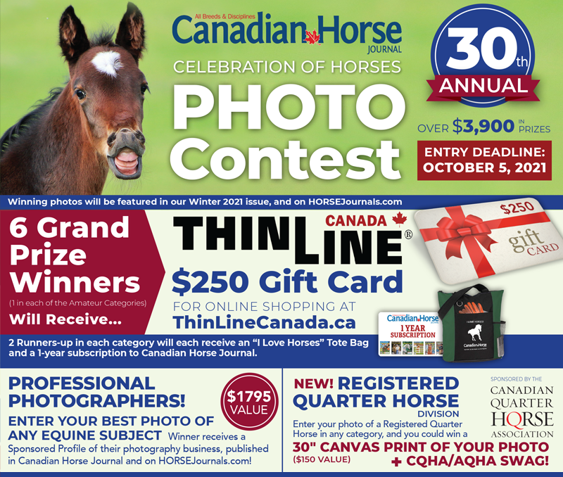 horse photo contest, canadian horse contests, photography contests horses, equine contests