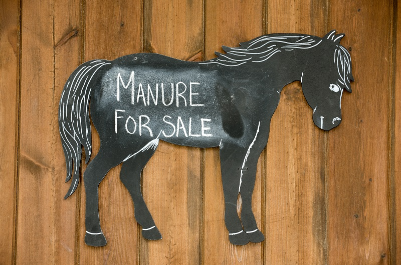 earning extra income horses, making money horses, tania millen, leasing a horse, composting manure