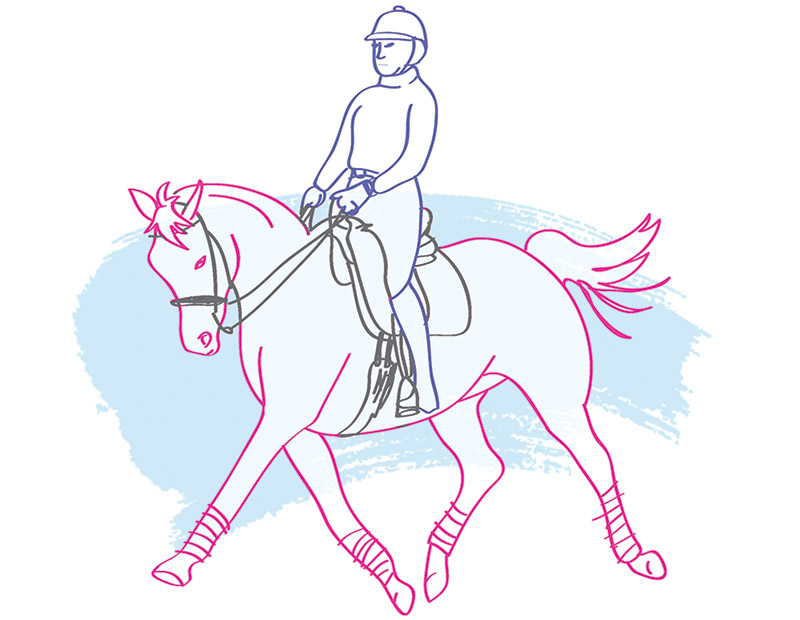 Gina Allan, Barb Kopacek, horse Riding Balance, 3 Point Touch horse rider, Three Point Touch ridign Posture, Transverse Abdominal Strengthening horse riding,