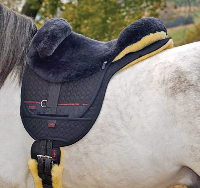 pippa hodge, cantra, canadian therapeutic riding association news, hippotherapy pippa hodge