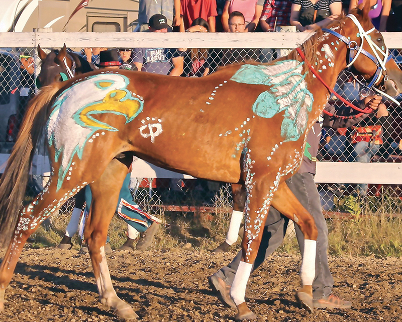 extreme horse sports in canada, archery on horseback, jousting on horseback, swordplay on horseback, Indian relay racing on horseback, shooting firearms on horseback