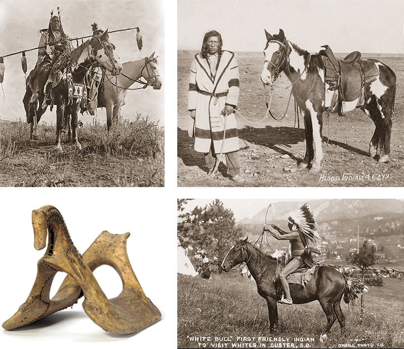 spanish mustang breed, history of spanish mustang, canyon de chelly national monument, spanish horses
