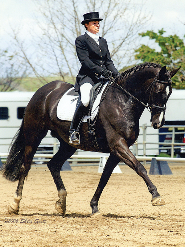 riding horses middle-age, older person wants to ride horses, how to start riding horses senior, grit high dressage,lorraine laframboise equestrian, sandra sokolosky riding horses