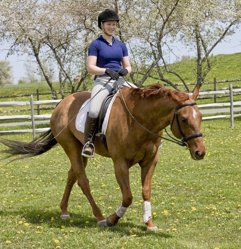how to stay calm while riding my horse, how to learn from my horse riding mistakes, annika mcgivern, enjoying my horse ride