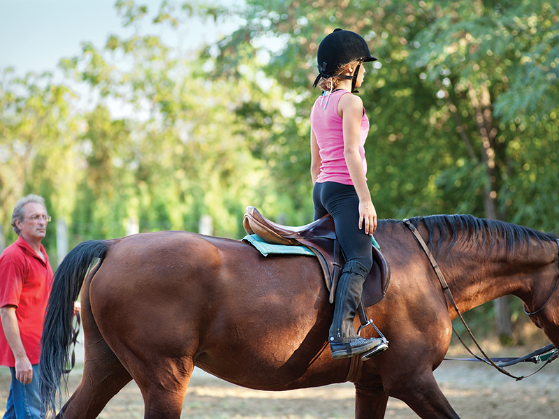 equestrian canada coach licensing program, how to find a certified riding coached, starting to ride a horse in canada, how to choose a hore trainer canada