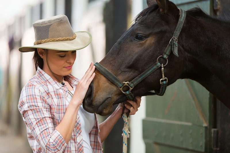 happy horse, horse wellbeing, alexa linton, equine sports therapist, how to respect my horse, understanding my horse
