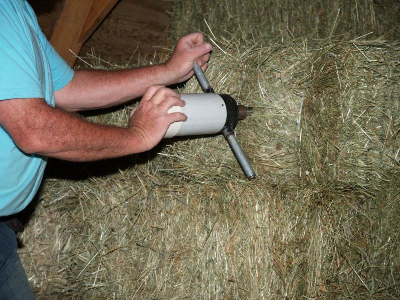 Hay Testing with NIRS, By Shelagh Niblock, PAS, hay forage analysis, overweight horse, equine metabolic conditions, cushing's disease horses, wet chemistry hay testing