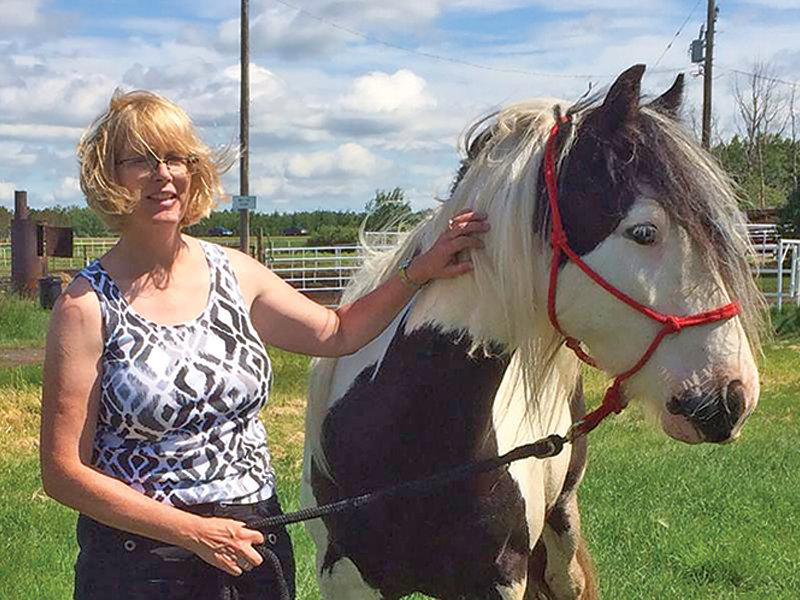 Older Adult riding lessons, how to ride a horse when middle-aged, getting back into horses