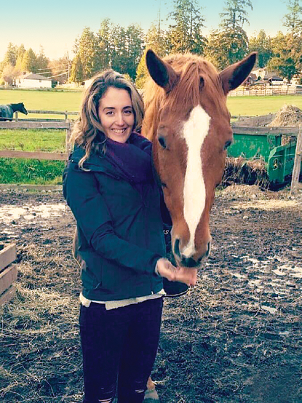 healing with horses, equine therapy, horses mindfullness, horses meditation