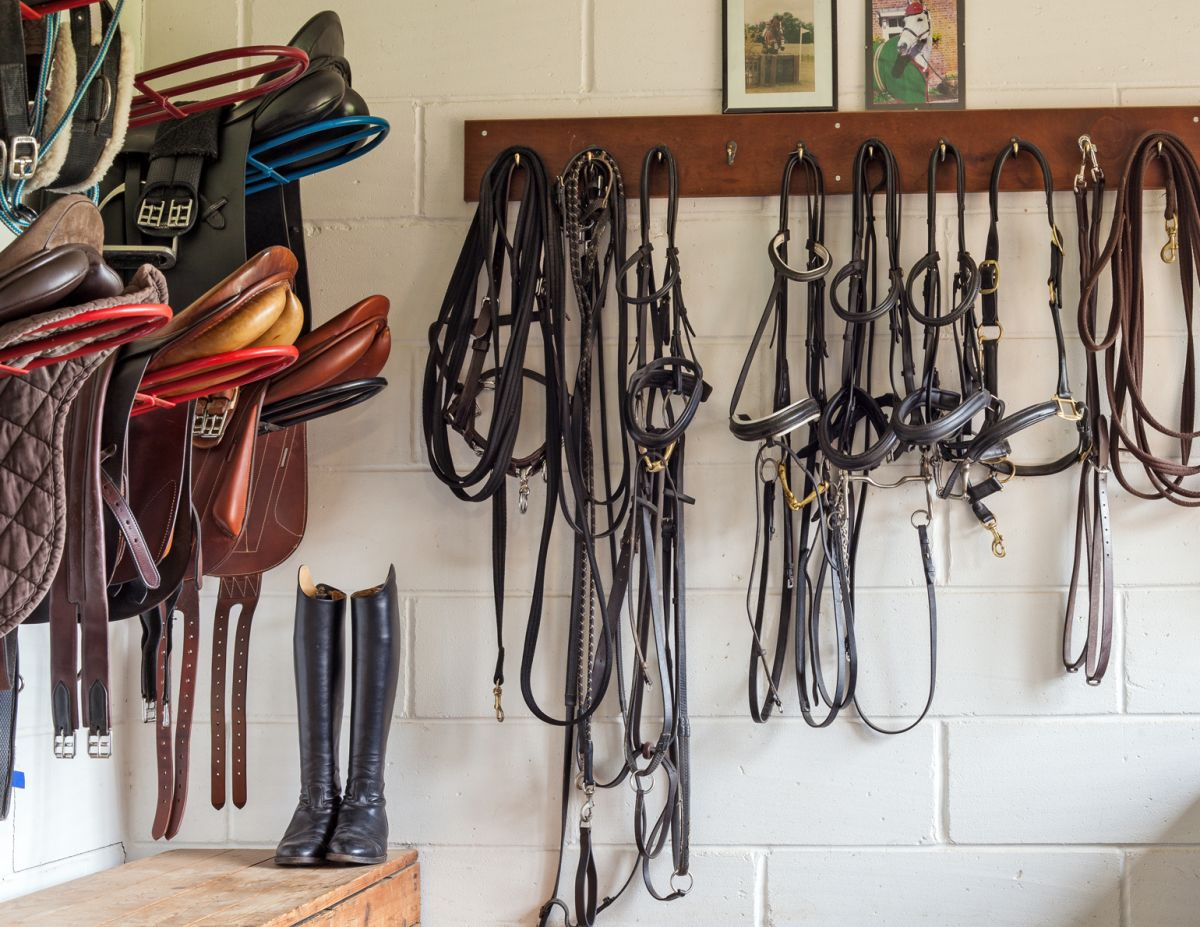 rat horse barn mice, first aid kit stable, tack room horse property, manure management horses