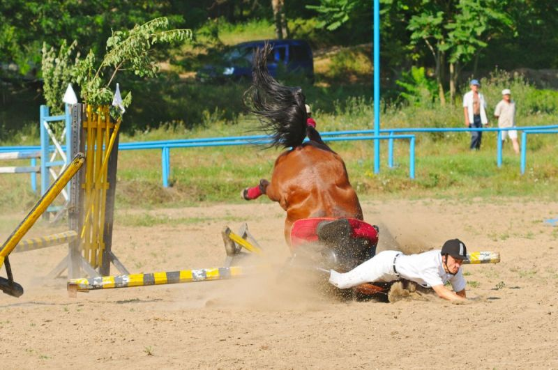 horse rider Psychology, horse rider concussion, overcoming traumatic riding accident, overcoming concussion horse riding