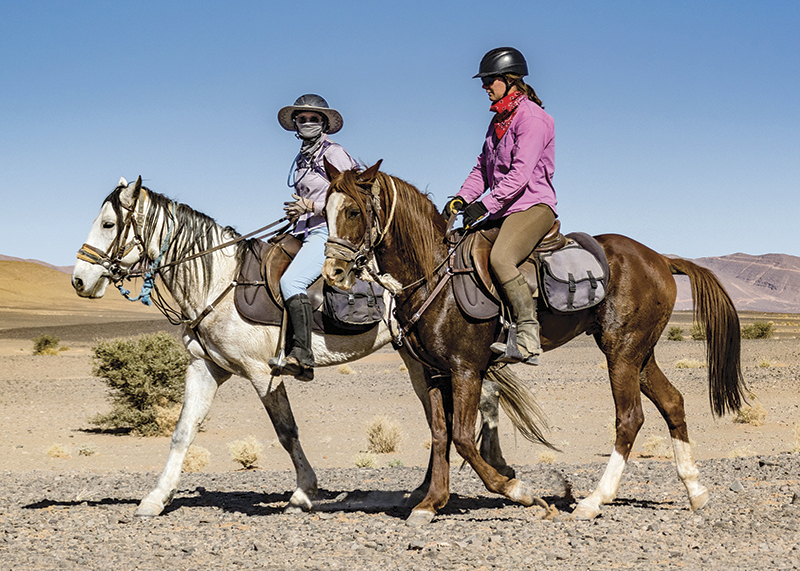 vacationing with horses, holidaying with horses, horse riding abroad, local horse riding, horse riding adventure, morocco sahara horses, tania millen