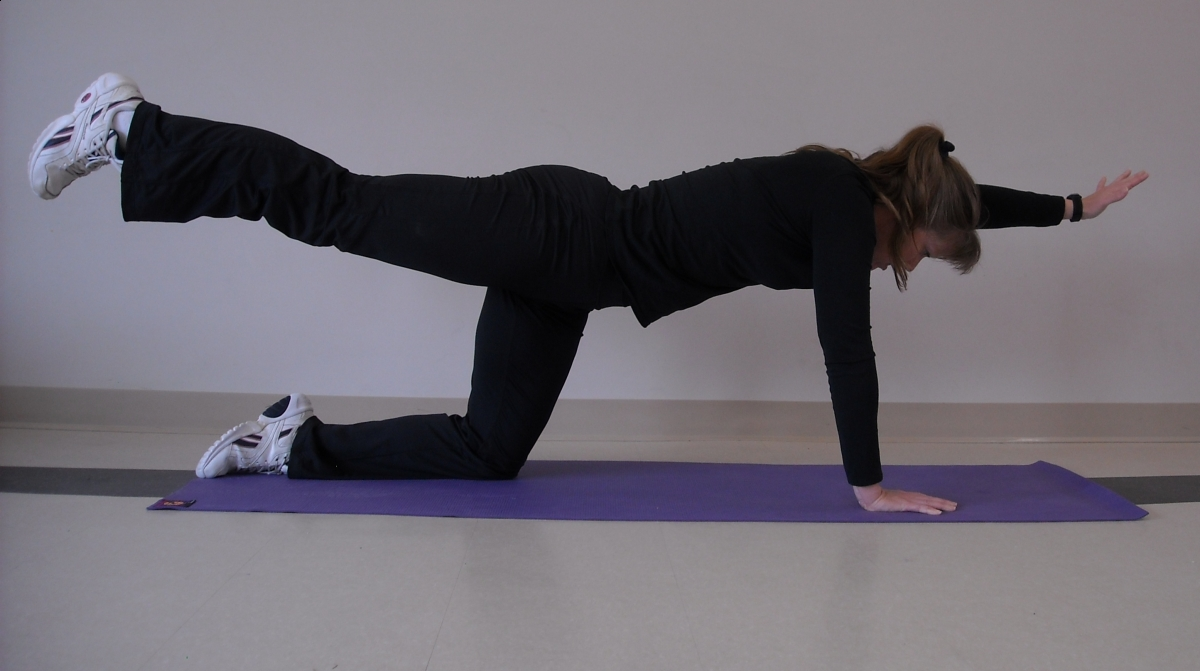 Horse rider back support, horse rider fitness, horse rider daily exercises, horse rider upper body strength