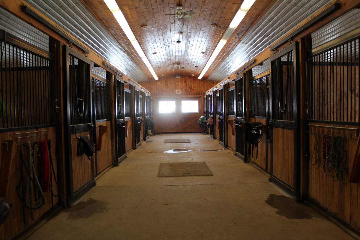 Dream Barn Committed To Community Horse Journals