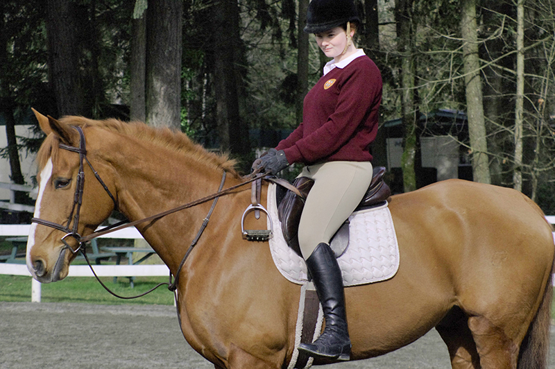Riding without stirrups, rider position, horse riding, two point trot, two point walk, posting trot, equine sitting trot,