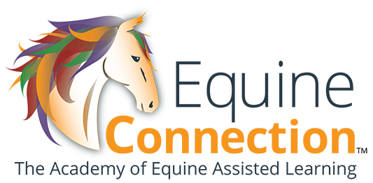 Equine Connection™