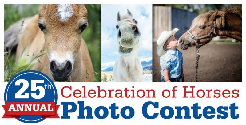 equine photo contest, horse photo contest, canadian horse journal photo contest
