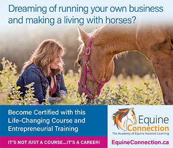 Equine Connection — it's not just a course...it's a career!