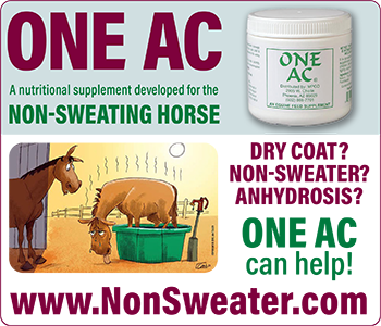 One AC from Magic Powder Company - for the non-sweating horse