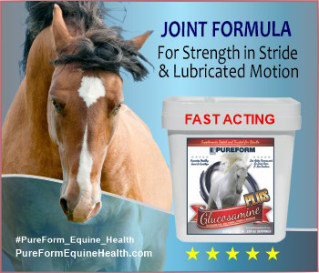 PureForm Joint Formula from SciencePure