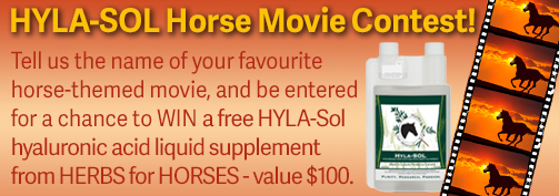 herbs for horses, hyla-sol, horse movie contest, equine movie contest, horse song contest, equine song contest, herbs for horses contest