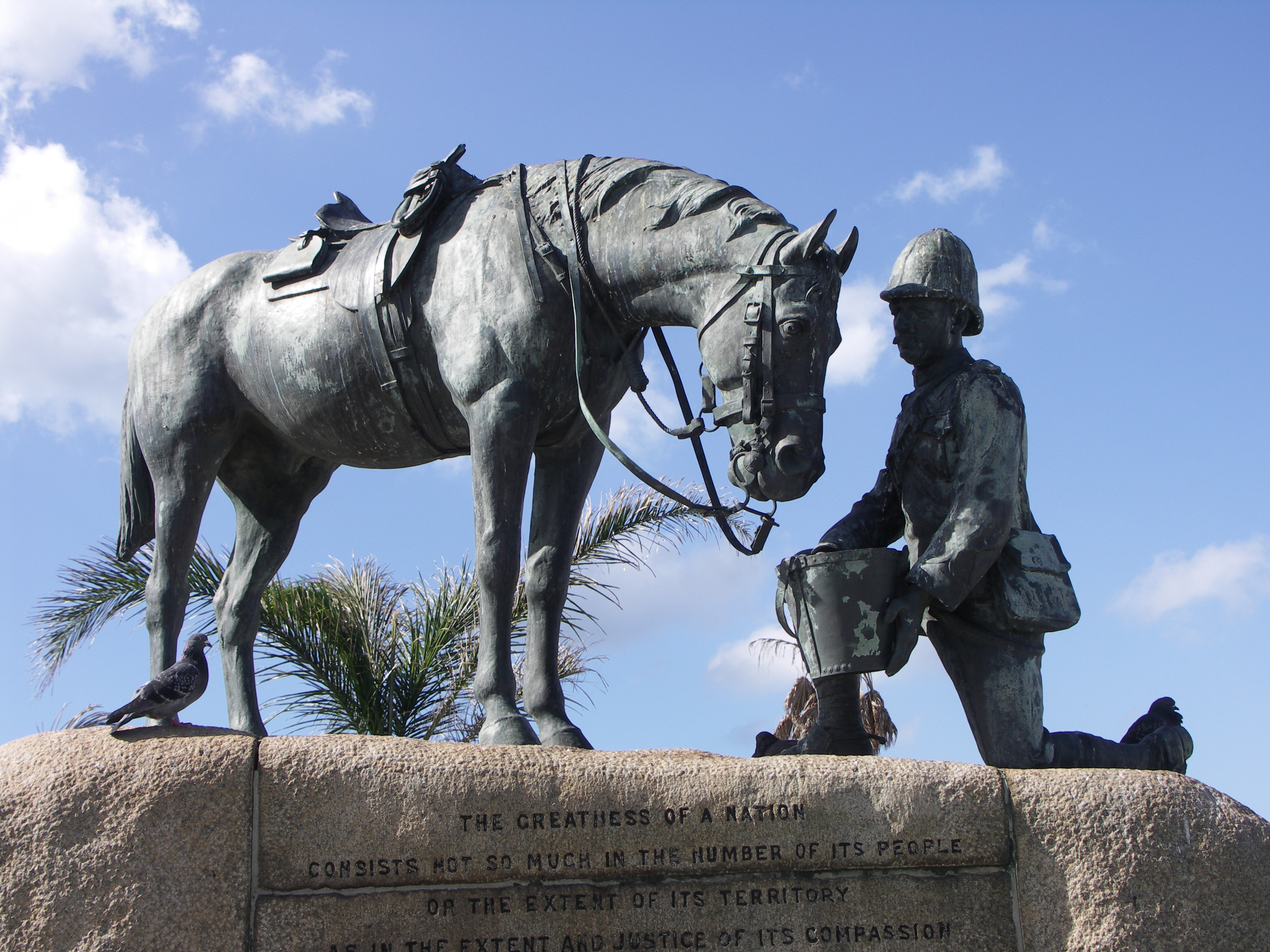 remembering horses in world wars