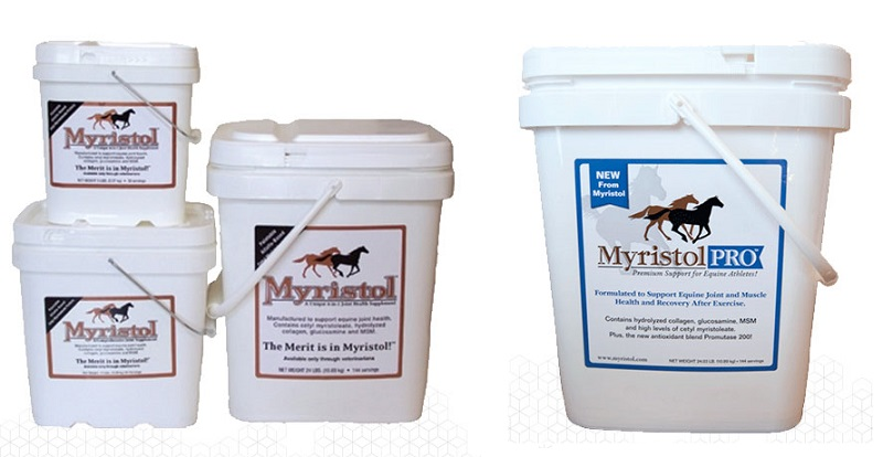 myristol pro equine joint health horse joint health equine osteoarthritis horse athletes equine lame horse joint disease equine