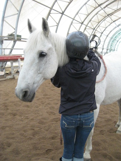 horse therapy university of regina therapeutic horsemanship riding care horses children youth horse therapy