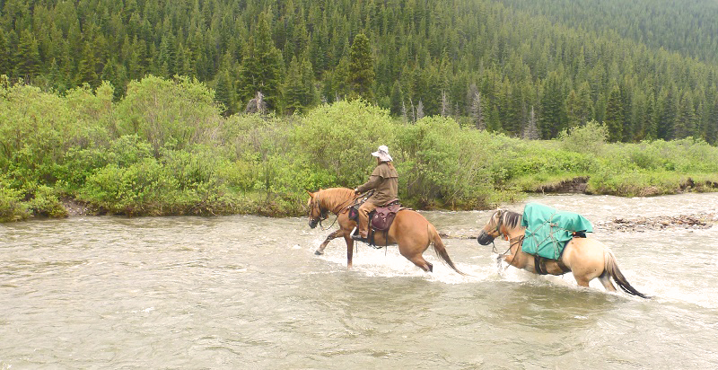Tania Millen, Blue Creek Outfitting, McBride, BC, pack trips, holidays on horseback, equine holiday, trail riding, pack horse