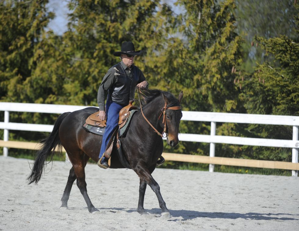 Steer Your Horse to Straightness