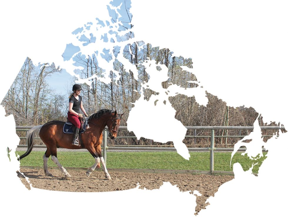 moving with horses, best places in canada to live with horses, alberta equine community, pei horse community, nova scotia equestrian community, tania millen