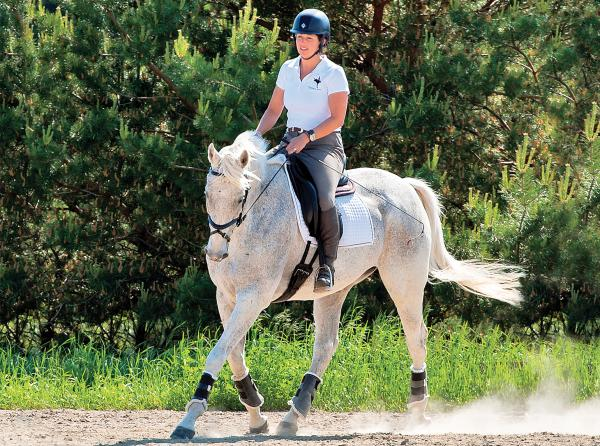 jec a ballou dressage, exercise programs for horses, best way to exercise horse, how to have an effective horse ride