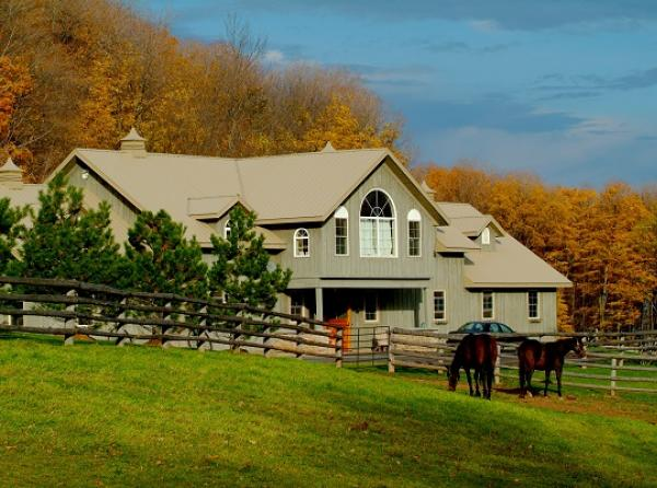 buying a horse property, living with horses, living on a horse farm, buying a horse farm, building a horse farm, building an equine property