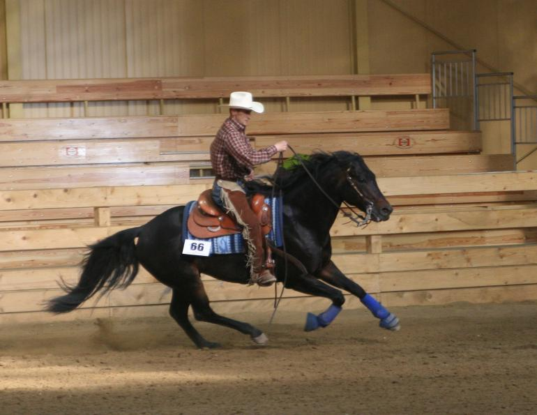 Improving Impulsion in the Reining Horse