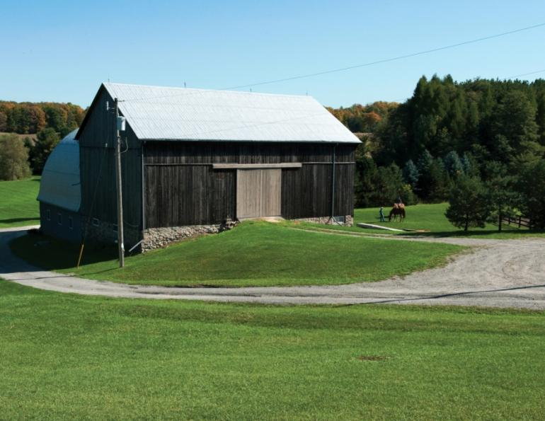 Barn makeover keys to a successful renovation horse for Bank barn construction
