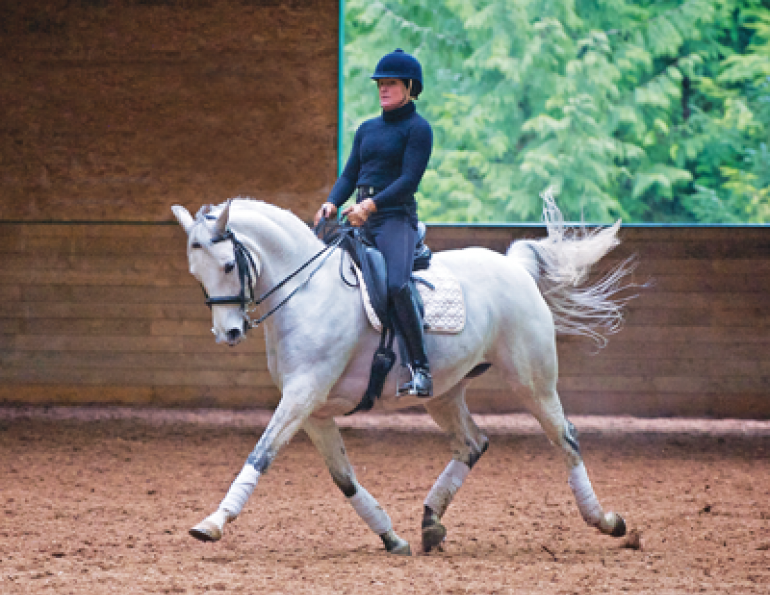 3 Point Touch Rider, Horse Fitness, Rider Fitness, Gina Belasik, riding fit, equifit services