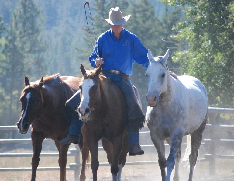 Jonathan Field, herd bound horse, horse training, natural horsemanship, actively helping your horse become calm and relaxed
