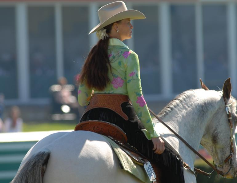 Mentally Fit horse riding, Mental Workouts for equestrians, horse rider mental workouts, equestrian mental fitness