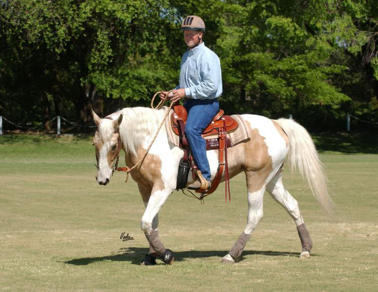 riding horses with eyes up, best riding position horses, lindsay grice