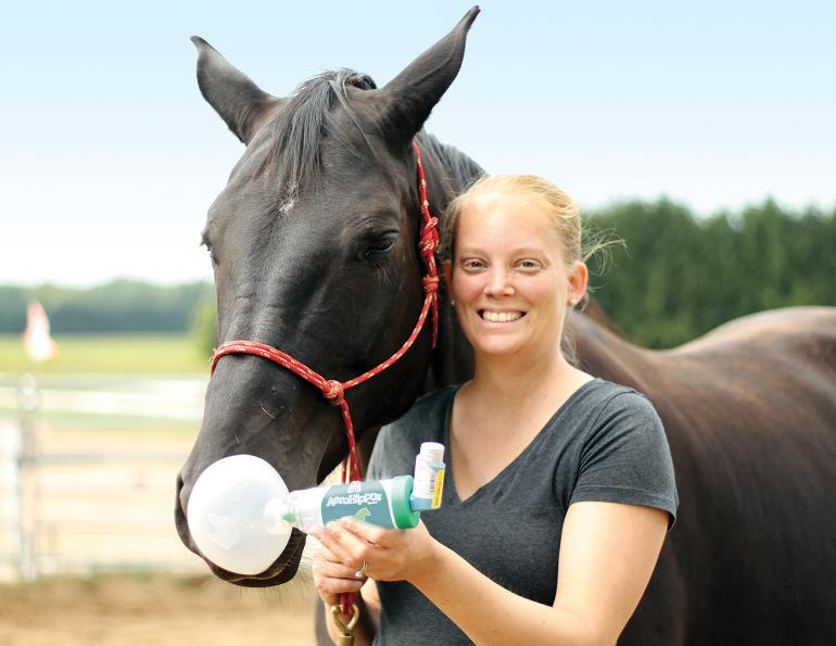 aerohippus, equine inhalers, how to treat a horse with asthma, equine asthma medications, my horse has asthma, drugs for horse asthma