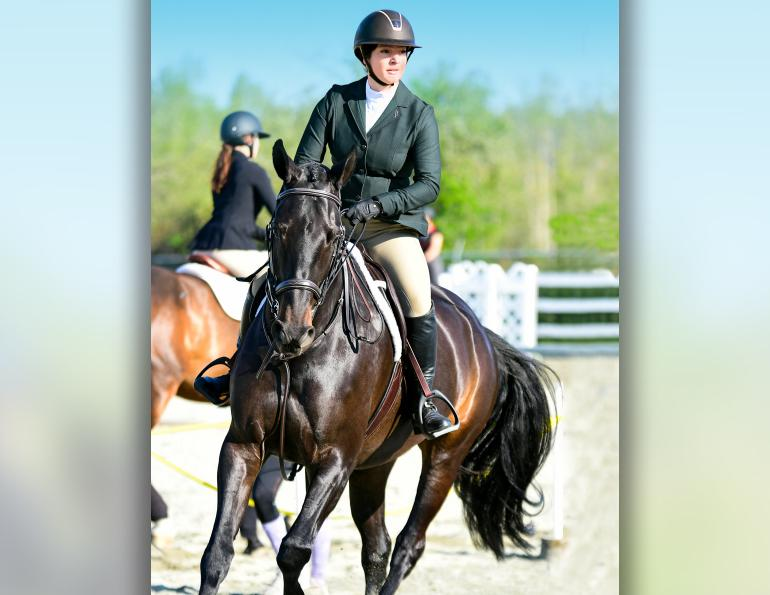 equine nosebands, equine martingales, horse whips, draw reins, tack allowed equestrian competition, aqha competition rules, equestrian canada competition rules