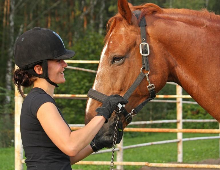 riding helmets, horse helmets, equine helmets, horse safety, equestrian safety, horseback safety
